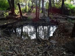 Patalkot water